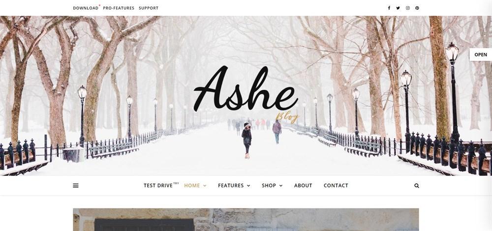 Ashe Free WordPress Blog Theme demo