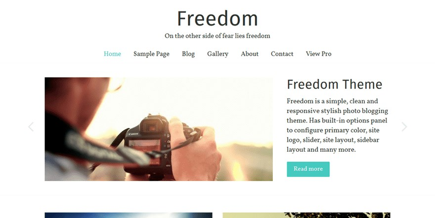 Freedom wordpress theme demo