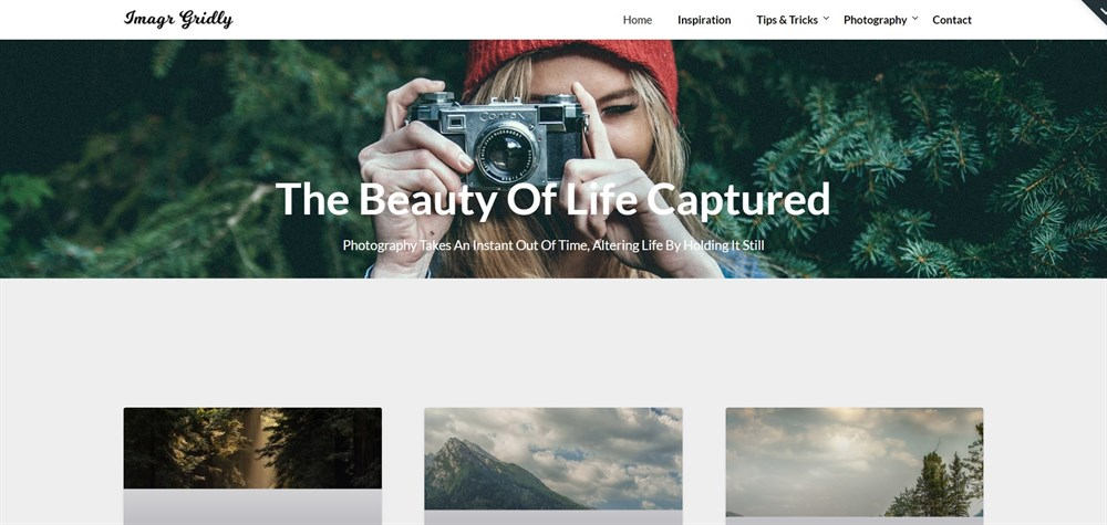 ImageGridly WordPress Theme Demo
