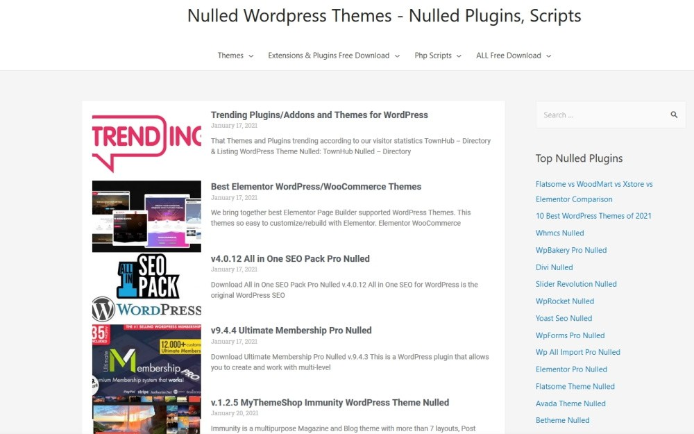 Why You Should Avoid Pirated WordPress Themes