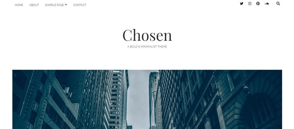Chosen WordPress author theme