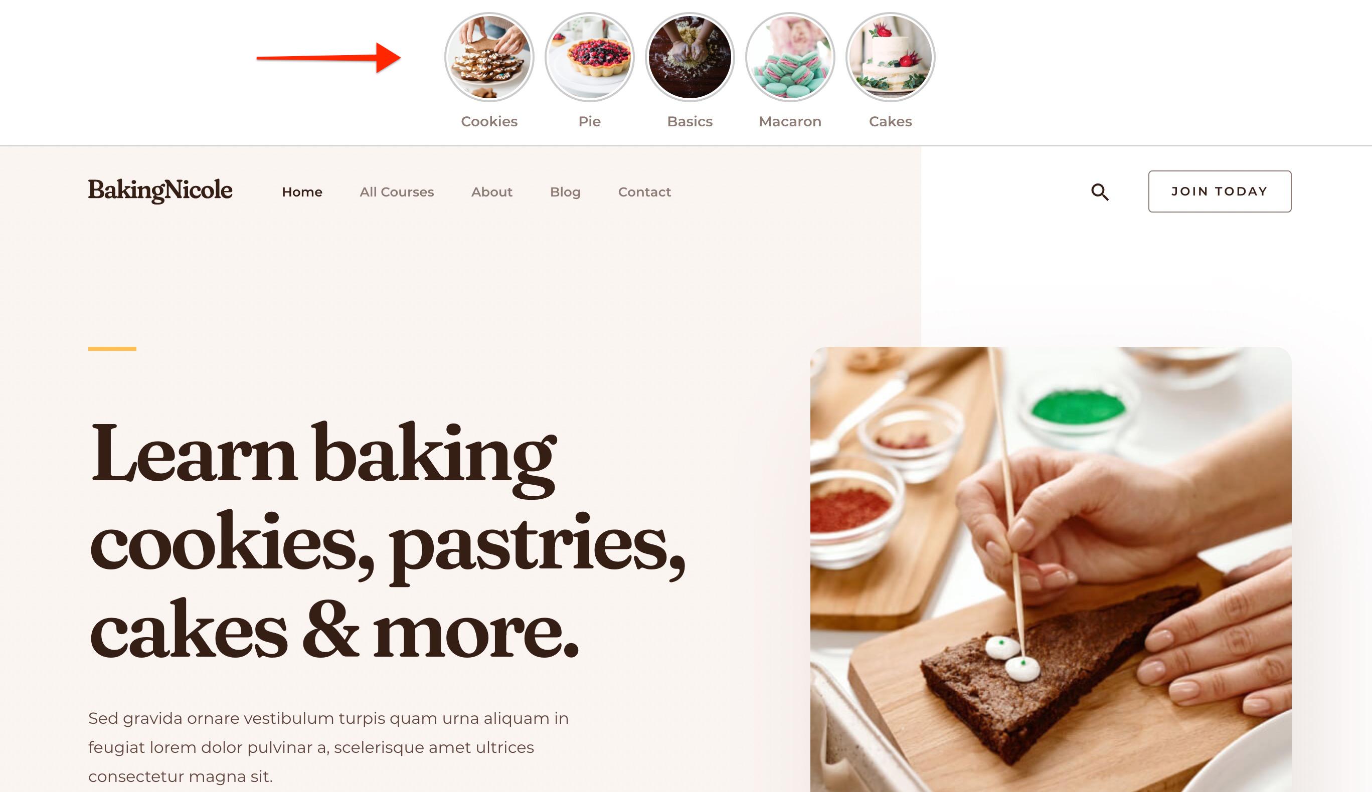 Display Web Stories on website