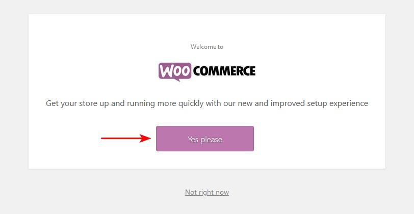 launching WooCommerce setup wizard