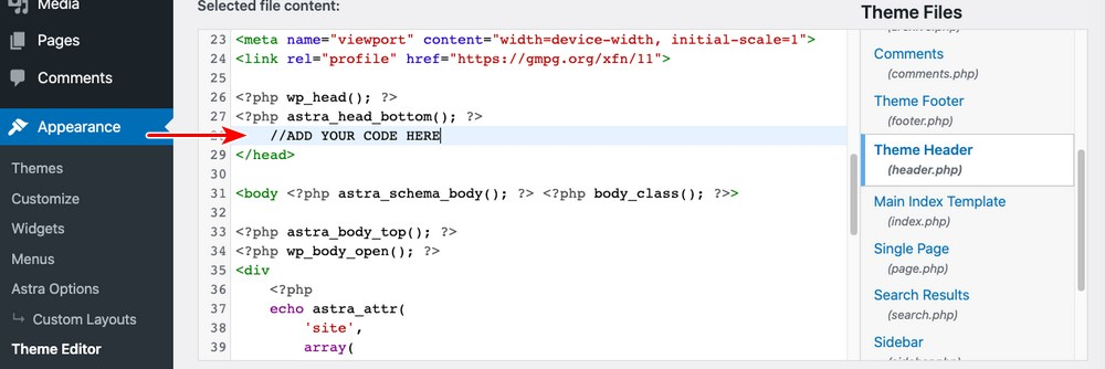 add code to theme header