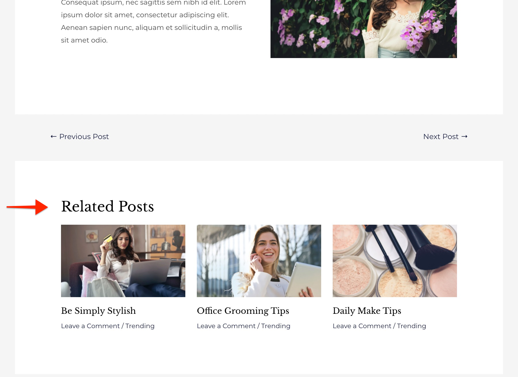 Related Posts on Single Blog