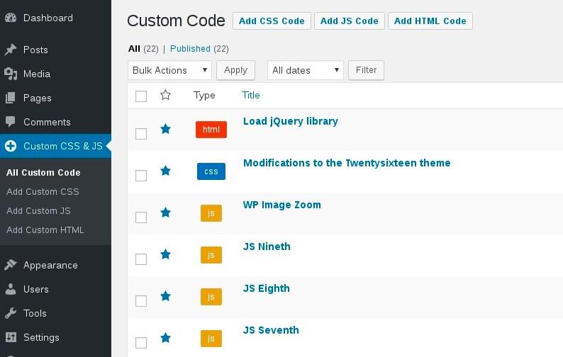 Custom CSS and JS plugin