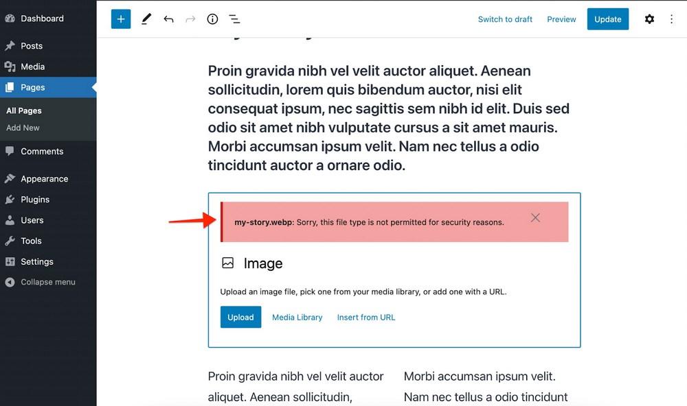 WordPress Webb görüntüleri eski sürümde desteklenmiyor