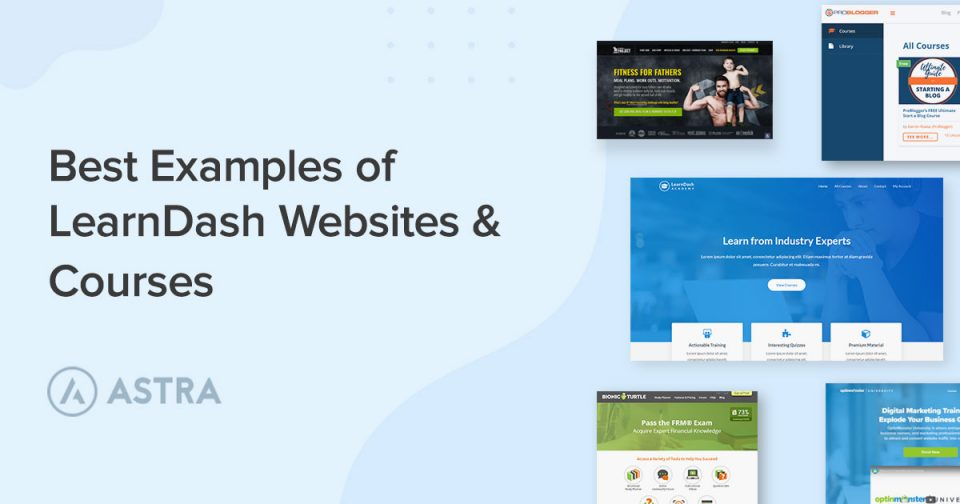 best-examples-of-learndash-webistes